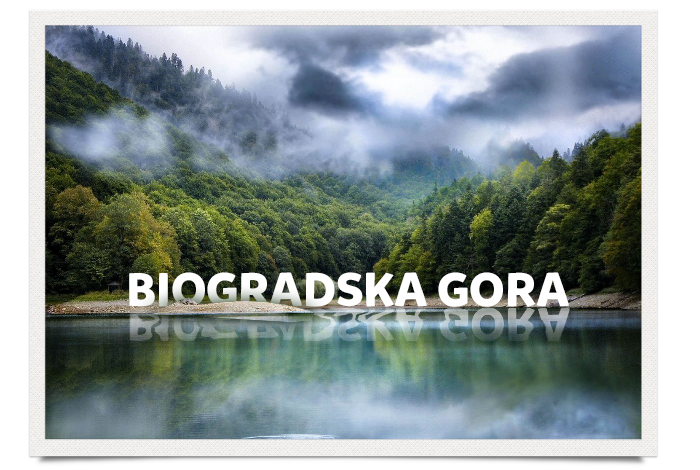 07_Biogradska_Gora